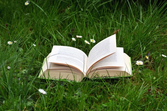Book in the grass