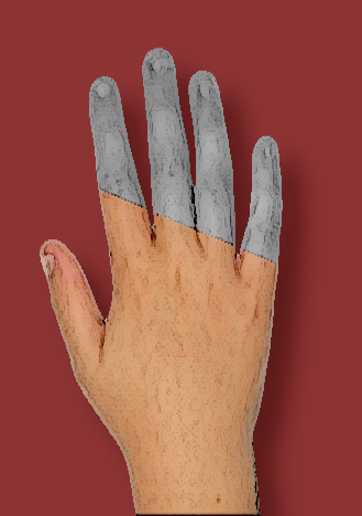 Hand version 1
